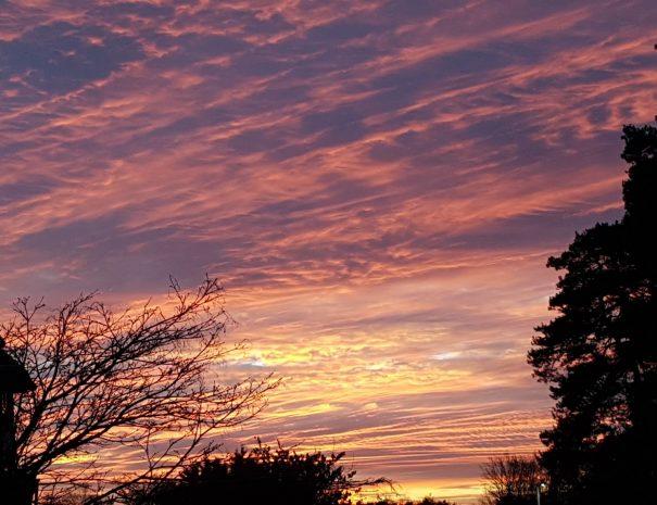 Sunset from Wildwood garden