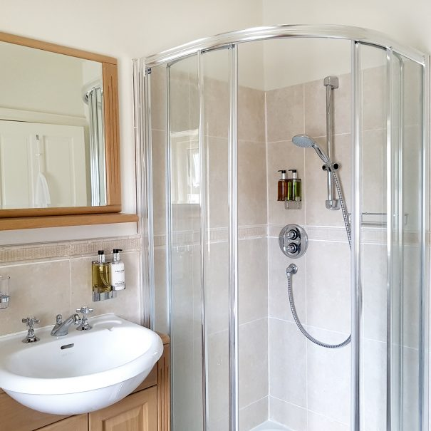 Silver Birch room - ensuite 1